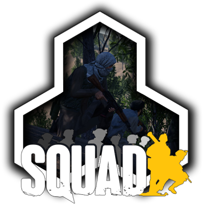 cheap Squad  Game Server